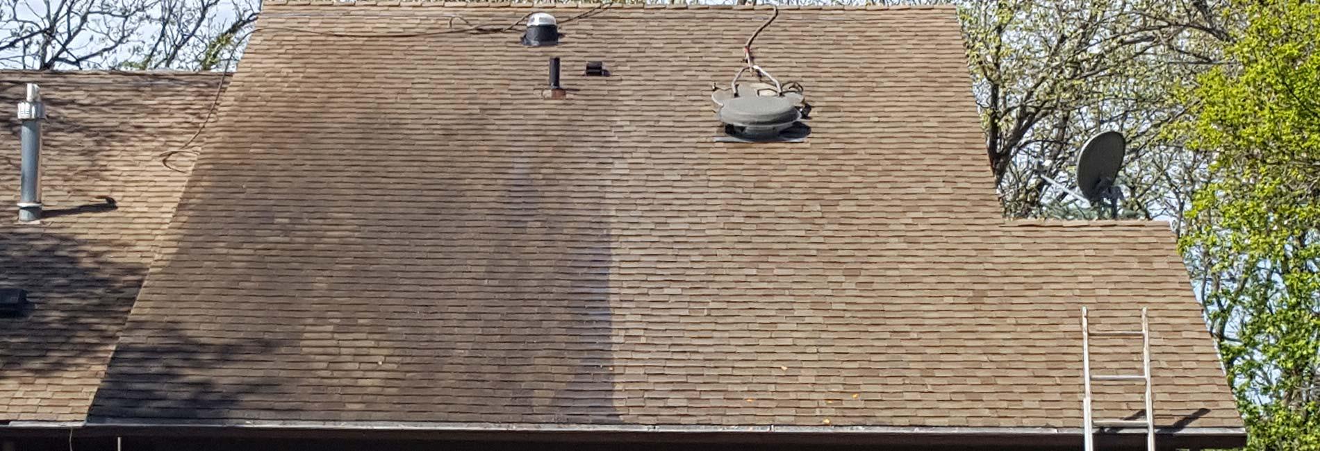 roof-shampoo